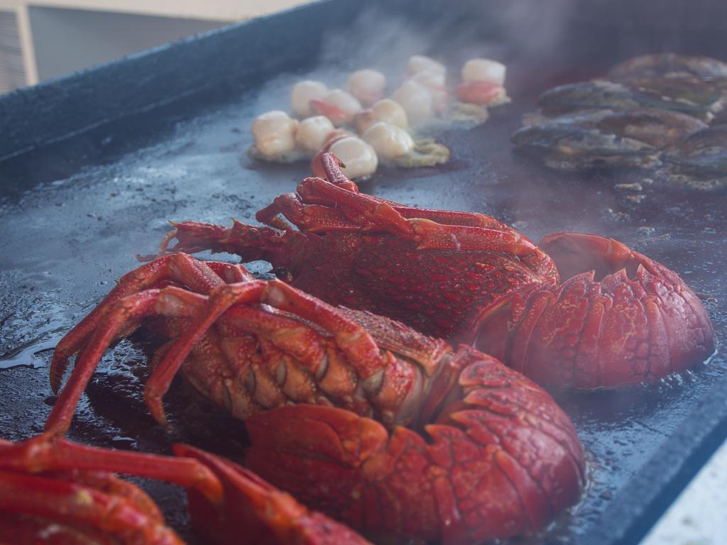 Kaikoura und Umgebung – Crayfish und andere Delikatessen